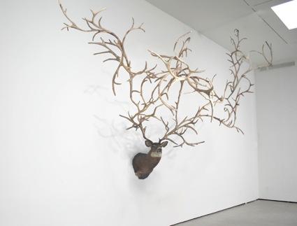 Carolyn Salas - Brooklyn, NY artist