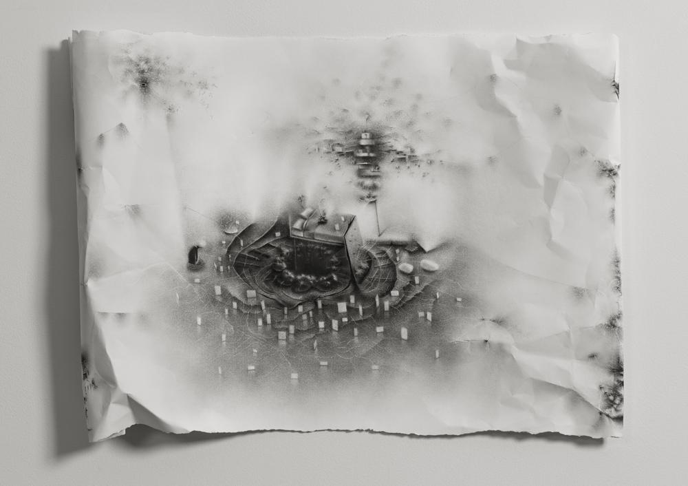 Charlotte Schulz - Peekskill, NY artist