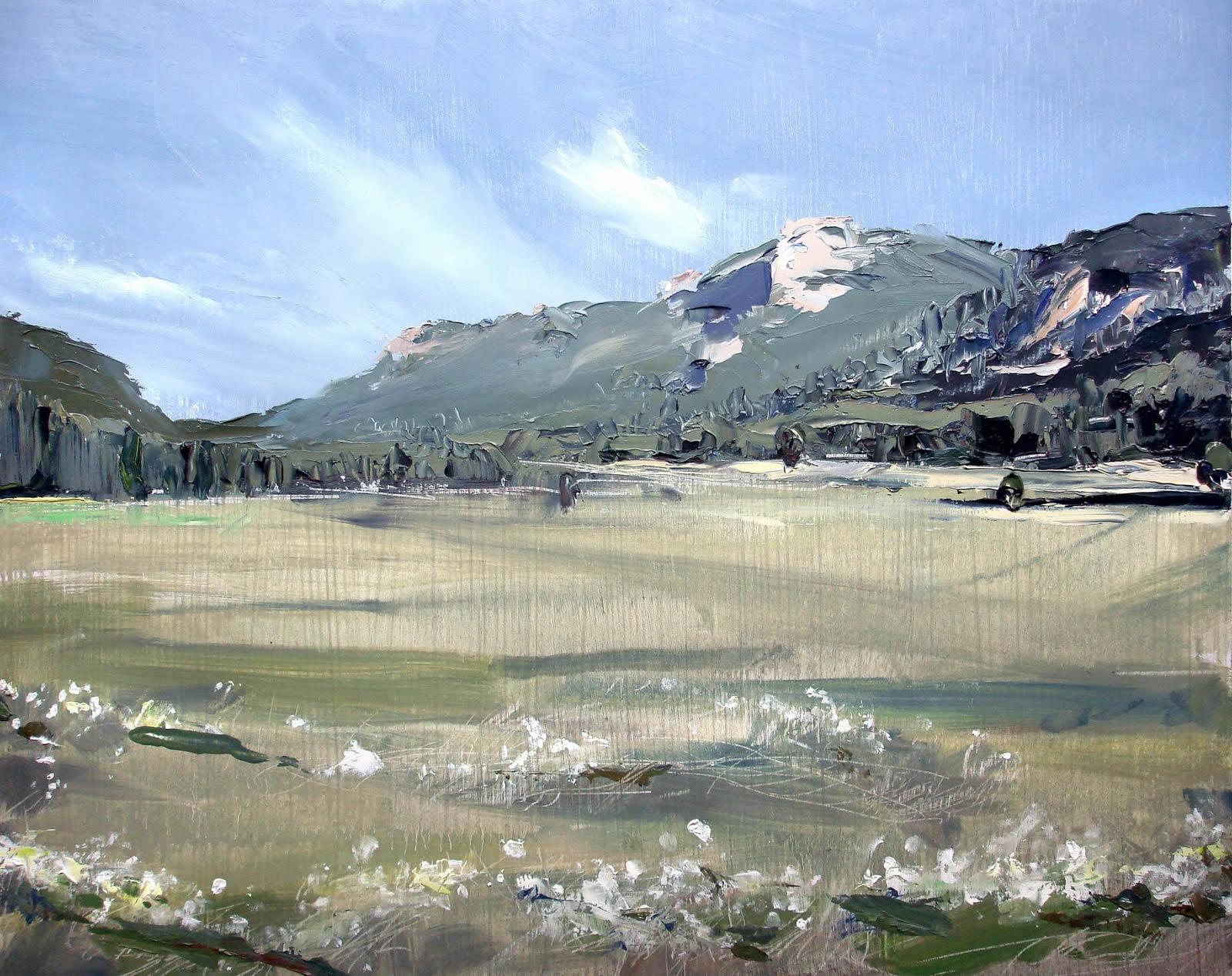 David Shingler - Denver, CO artist