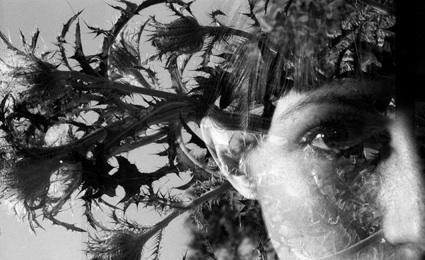 Jessica Hosman - Lowell, MA artist
