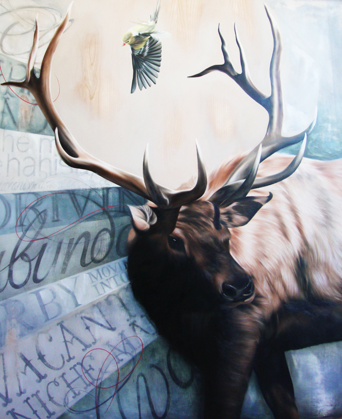 Josie Morway - Providence, RI artist