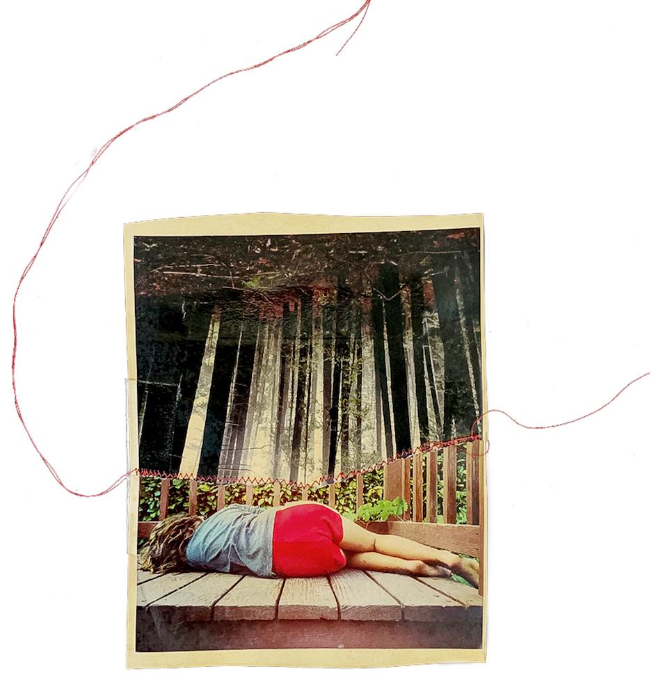 Liz Steketee - San Francisco, CA artist