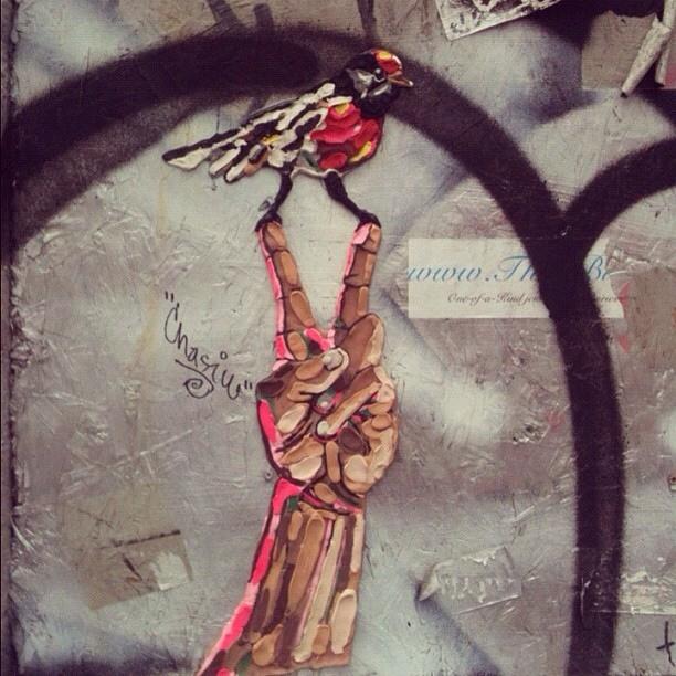 MRtoll - New York, NY artist