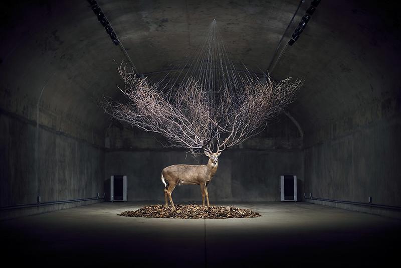 Myeongbeom Kim - Chicago, IL artist