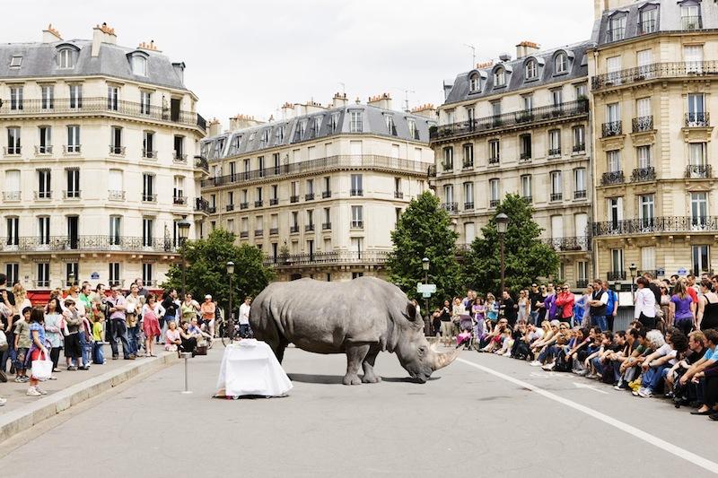 Renaud Marion - Paris, France artist