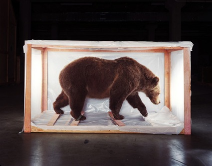 Richard Barnes - San Francisco, CA artist