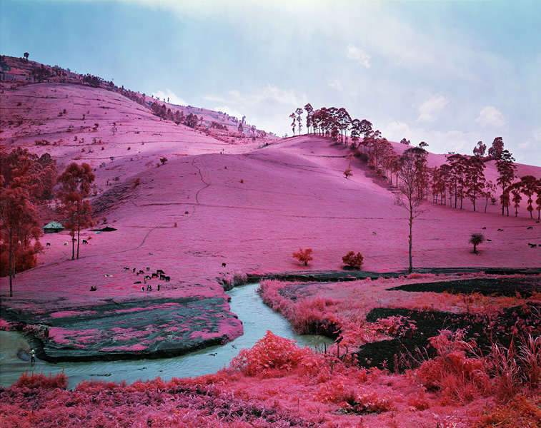 Richard Mosse - New York, NY artist